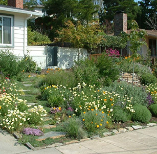 Lawn To Garden Examples